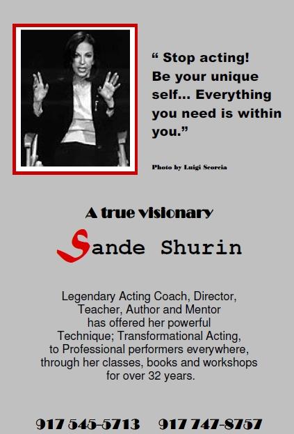 Sande-Shurin_brochure-front
